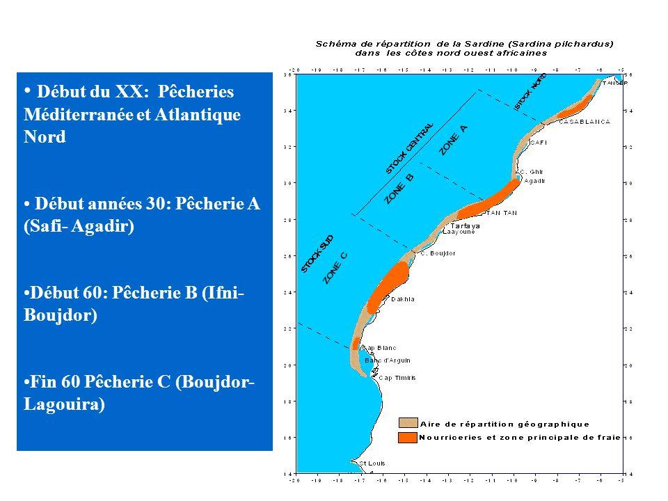 HISTORIQUE & DEVELOPPEMENT Pêche pélagique est créée par et pour l industrie de transformation 5 pêcheries se sont développées chronologiquement du No