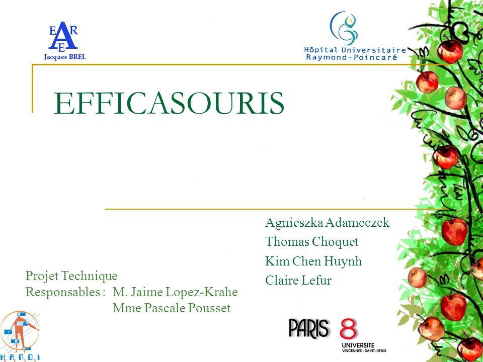 EFFICASOURIS Agnieszka Adameczek Thomas Choquet Kim Chen Huynh Claire Lefur Projet Technique Responsables : M. Jaime Lopez-Krahe Mme Pascale Pousset