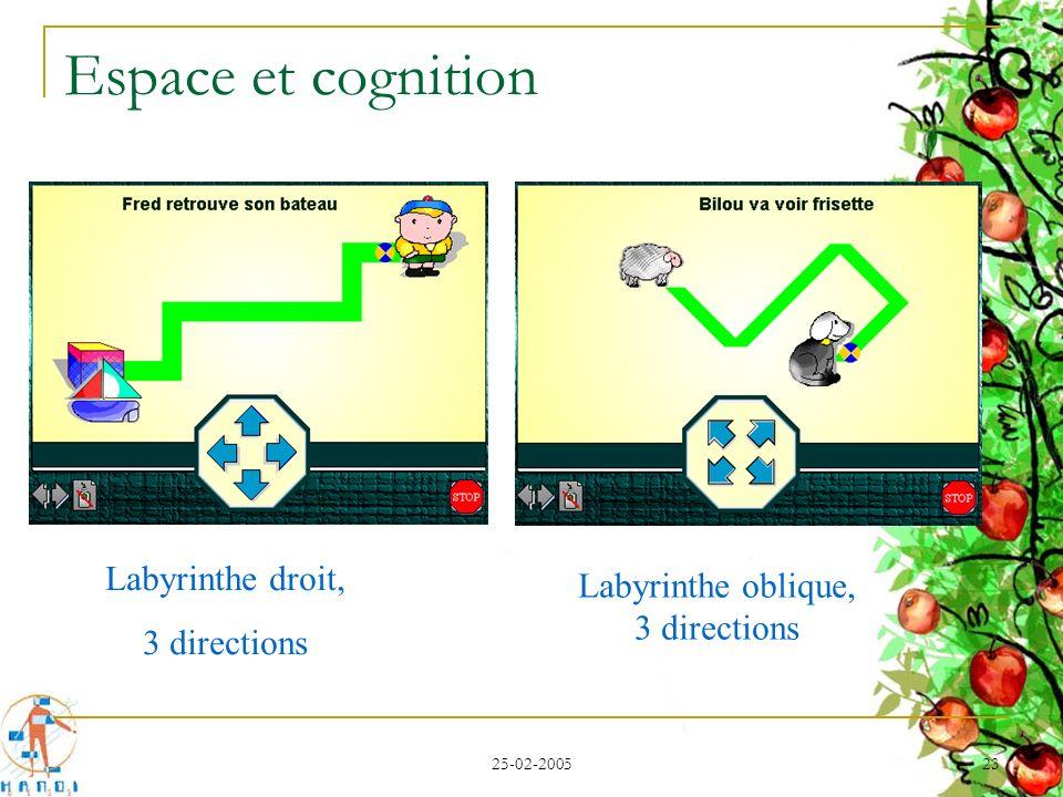 25-02-2005 23 Espace et cognition Labyrinthe droit, 3 directions Labyrinthe oblique, 3 directions
