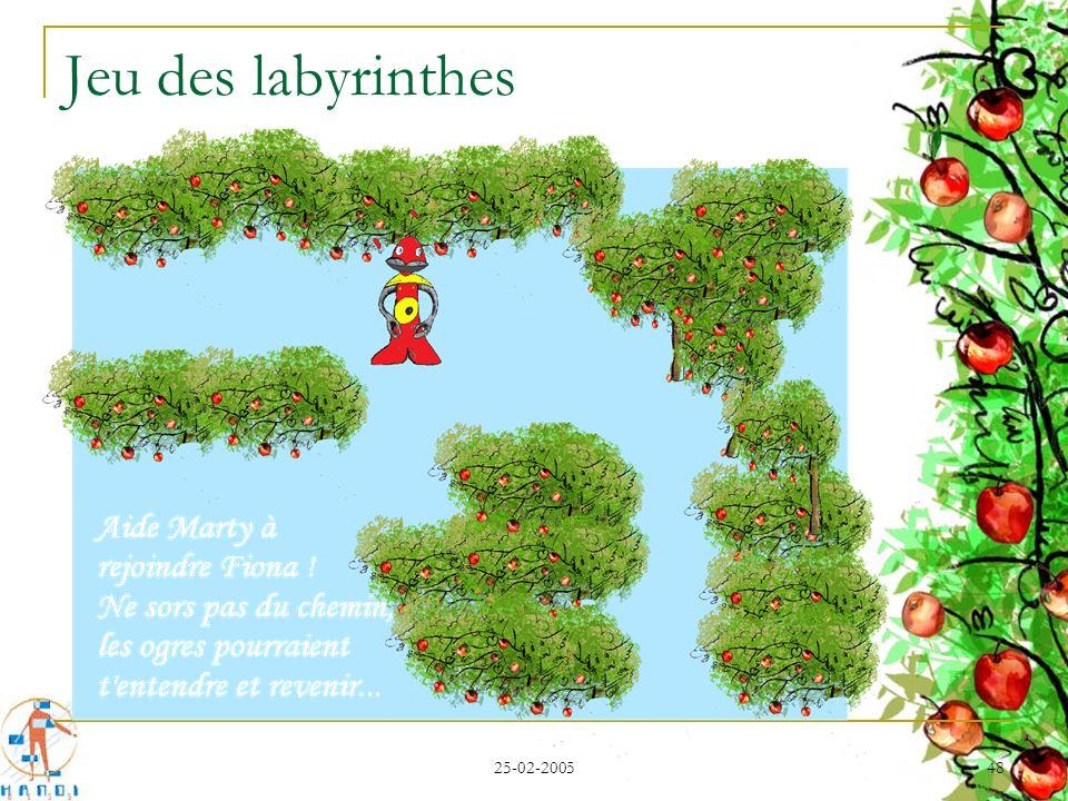 25-02-2005 48 Jeu des labyrinthes