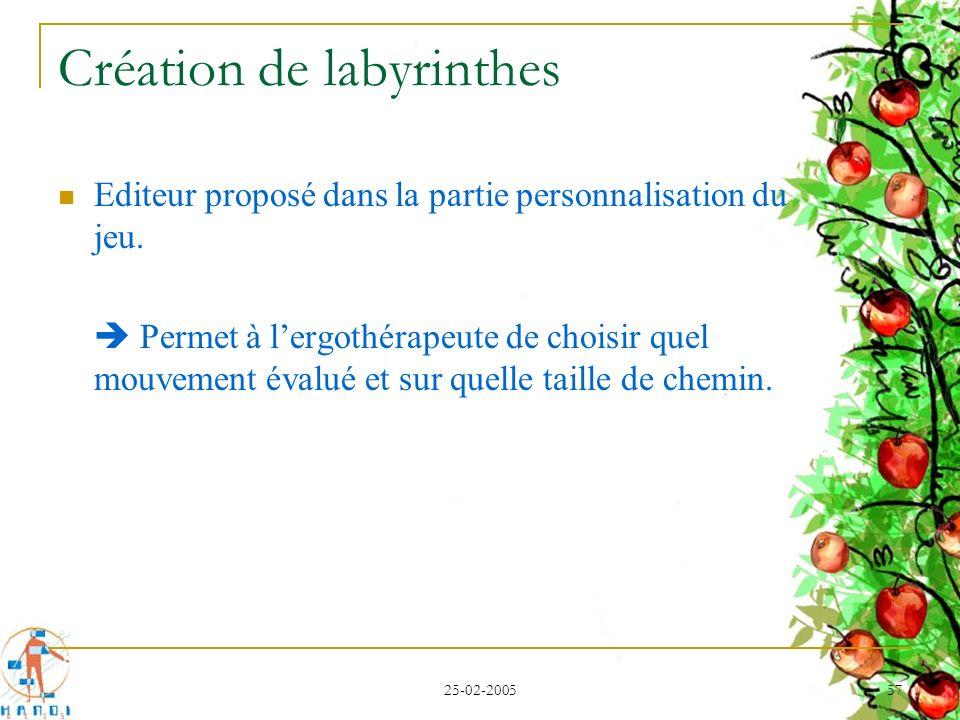 25-02-2005 57 Création de labyrinthes Editeur proposé dans la partie personnalisation du jeu. Permet à lergothérapeute de choisir quel mouvement évalu