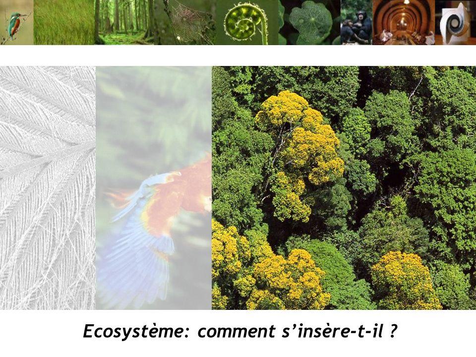 Ecosystème: comment sinsère-t-il ?