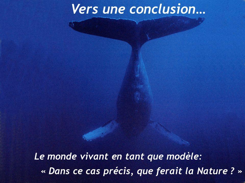 Vers une conclusion… Le monde vivant en tant que modèle: « Dans ce cas précis, que ferait la Nature .
