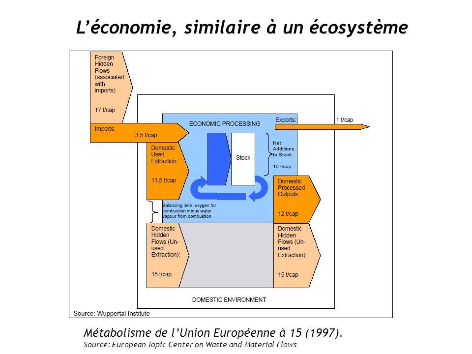Les écosystème de type I Développement basé sur la croissance et La maximalisation Des flux de matières