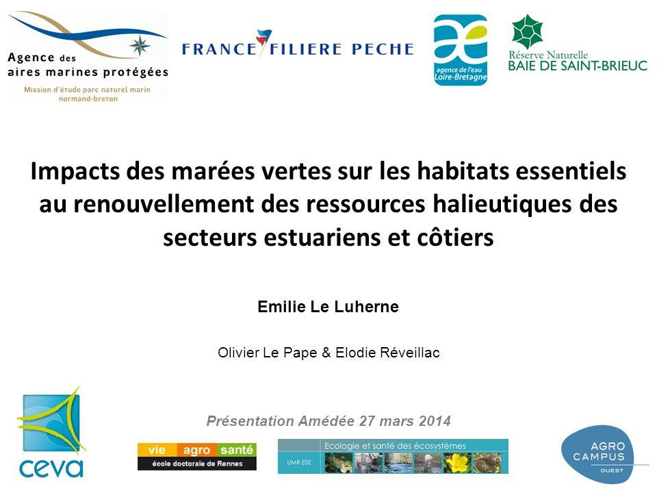 Olivier Le Pape & Elodie Réveillac Emilie Le Luherne Impacts des marées vertes sur les habitats essentiels au renouvellement des ressources halieutiqu