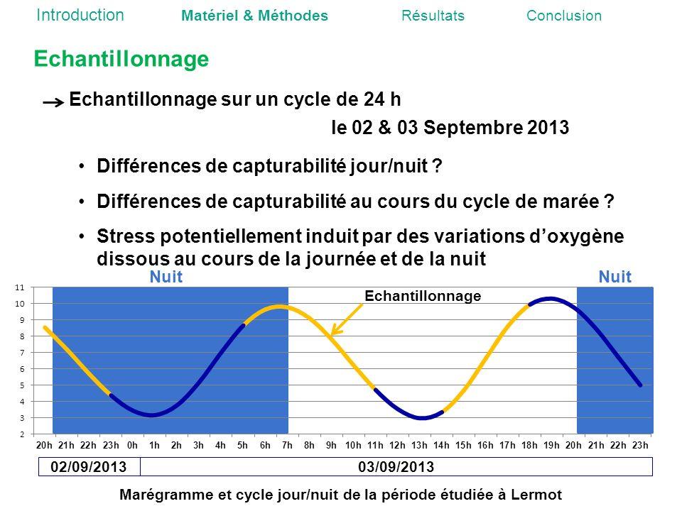 Echantillonnage sur un cycle de 24 h le 02 & 03 Septembre 2013 Echantillonnage Différences de capturabilité jour/nuit ? Différences de capturabilité a