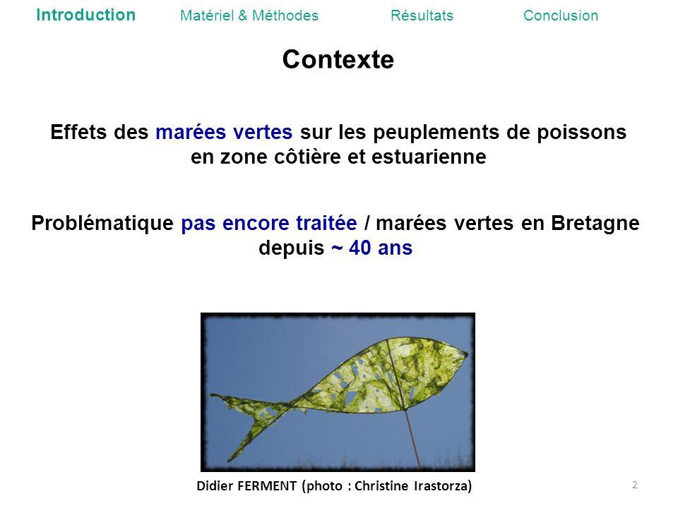 Contexte Didier FERMENT (photo : Christine Irastorza) 2 Introduction Matériel & Méthodes Résultats Conclusion Effets des marées vertes sur les peuplem