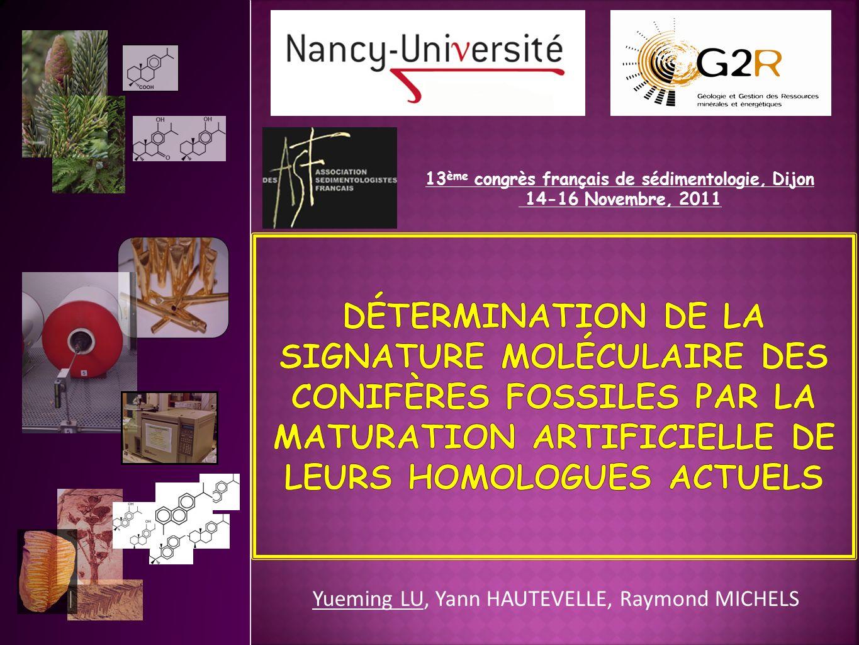 Yueming LU, Yann HAUTEVELLE, Raymond MICHELS 13 ème congrès français de sédimentologie, Dijon 14-16 Novembre, 2011
