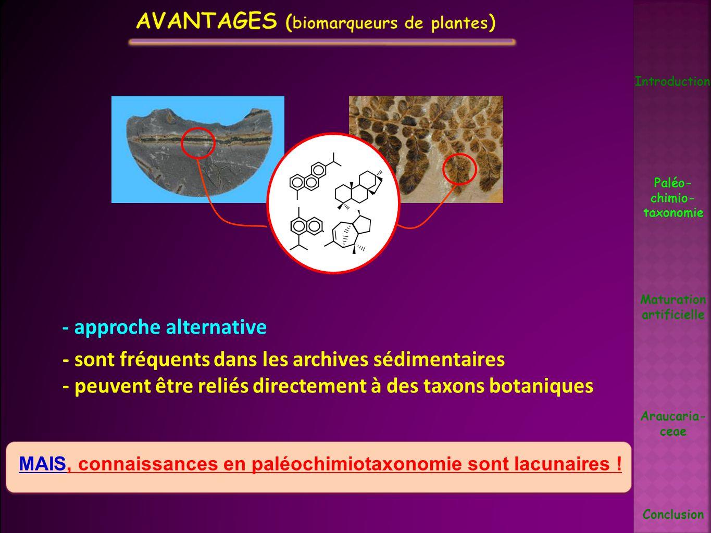 - sont fréquents dans les archives sédimentaires - peuvent être reliés directement à des taxons botaniques MAIS, connaissances en paléochimiotaxonomie
