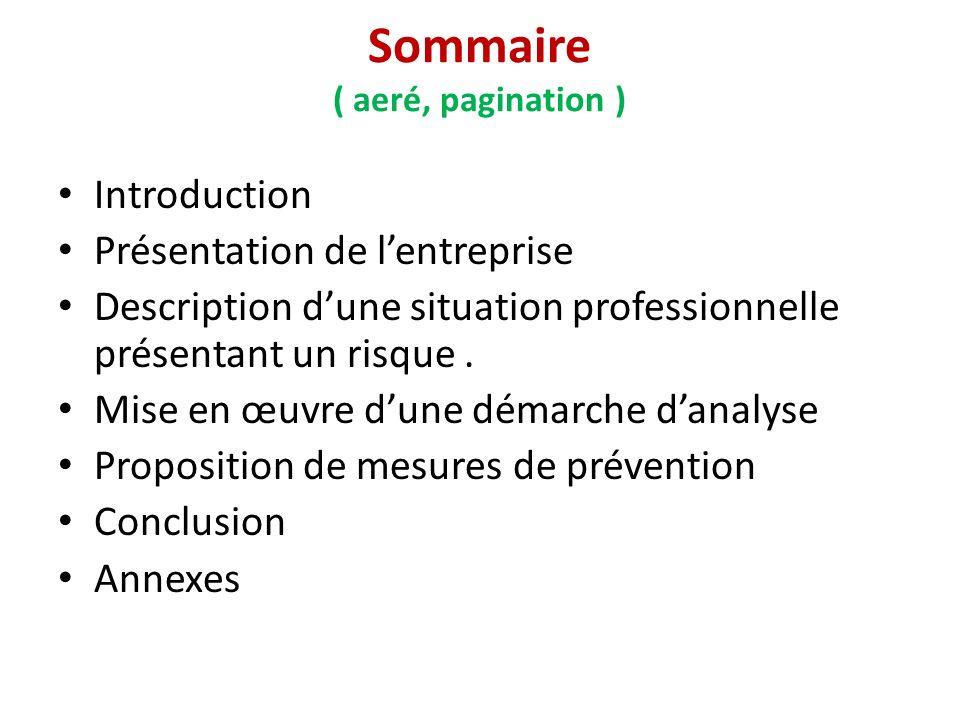 Sommaire ( aeré, pagination ) Introduction Présentation de lentreprise Description dune situation professionnelle présentant un risque.