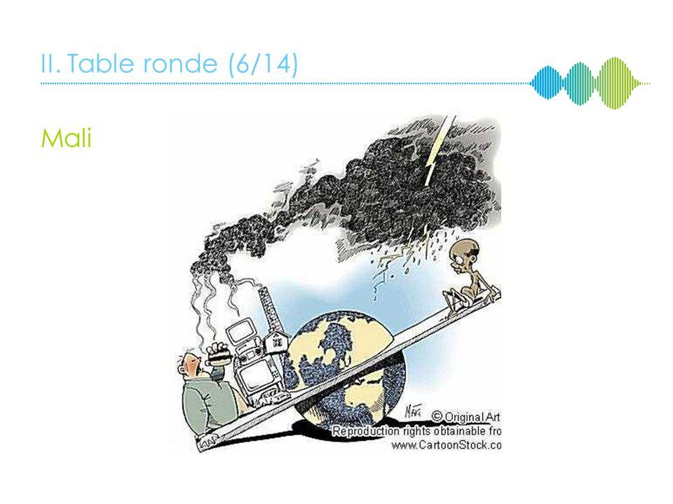 II. Table ronde (5/14) Mali Le Journal du Mali « Durban, échec et mat pour lAfrique? » 6 décembre 2011 Optimisme; Nouvelle conscience du rôle des État