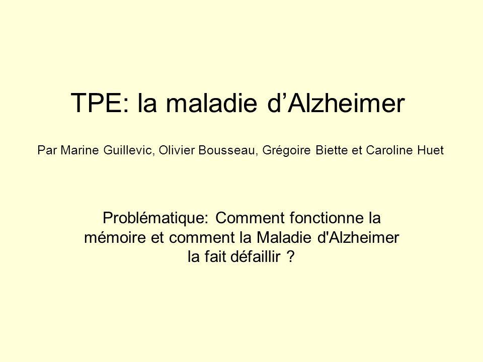 TPE: la maladie dAlzheimer Problématique: Comment fonctionne la mémoire et comment la Maladie d'Alzheimer la fait défaillir ? Par Marine Guillevic, Ol
