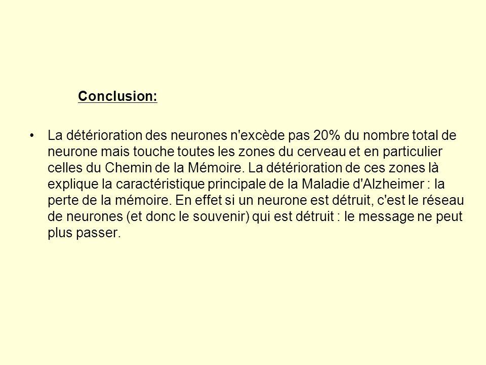 Conclusion: La détérioration des neurones n'excède pas 20% du nombre total de neurone mais touche toutes les zones du cerveau et en particulier celles