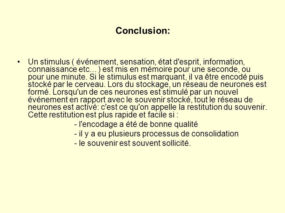 Conclusion: Un stimulus ( événement, sensation, état d'esprit, information, connaissance etc... ) est mis en mémoire pour une seconde, ou pour une min