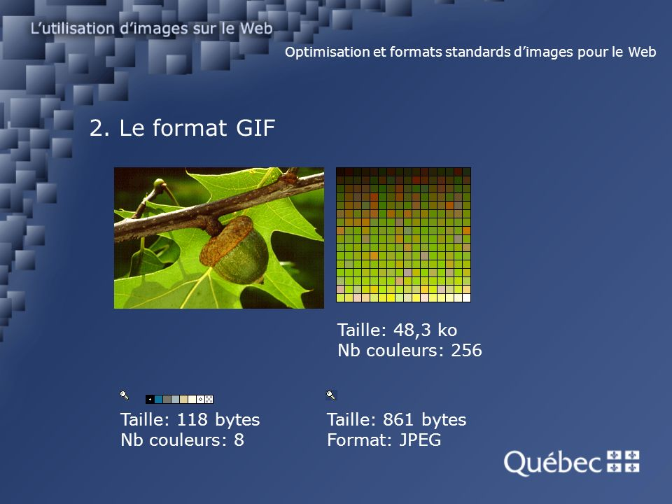 2. Le format GIF Optimisation et formats standards dimages pour le Web Taille: 48,3 ko Nb couleurs: 256 Taille: 118 bytes Nb couleurs: 8 Taille: 861 b