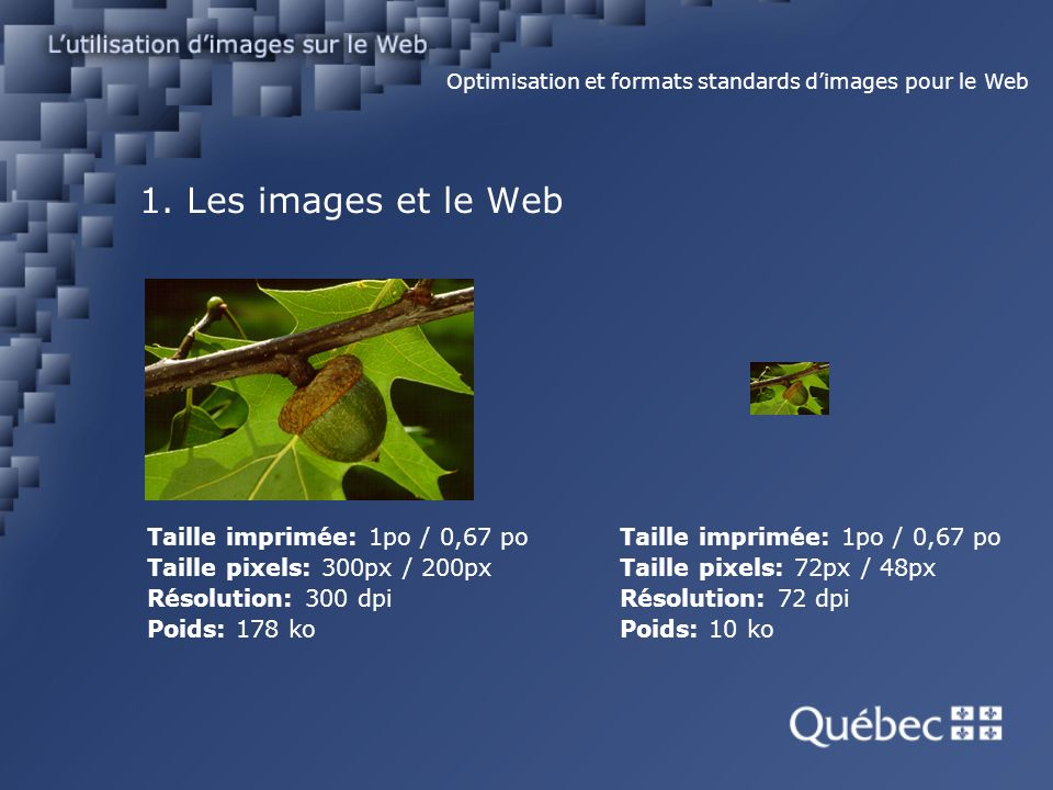 1. Les images et le Web Taille imprimée: 1po / 0,67 po Taille pixels: 300px / 200px Résolution: 300 dpi Poids: 178 ko Optimisation et formats standard