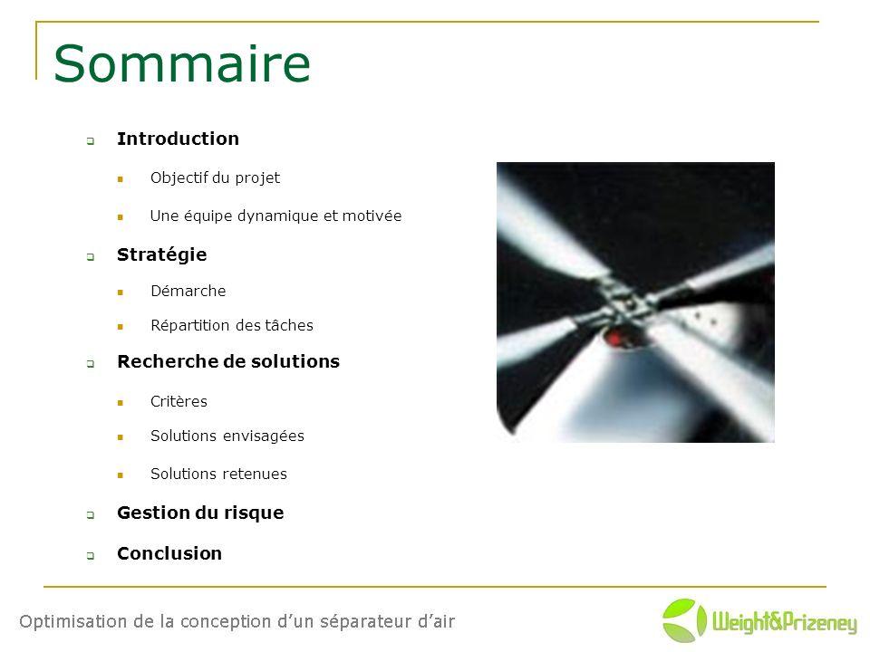 Sommaire Introduction Objectif du projet Une équipe dynamique et motivée Stratégie Démarche Répartition des tâches Recherche de solutions Critères Sol