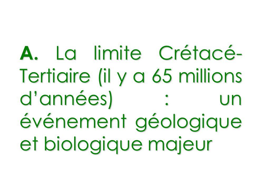 A. La limite Crétacé- Tertiaire (il y a 65 millions dannées) : un événement géologique et biologique majeur