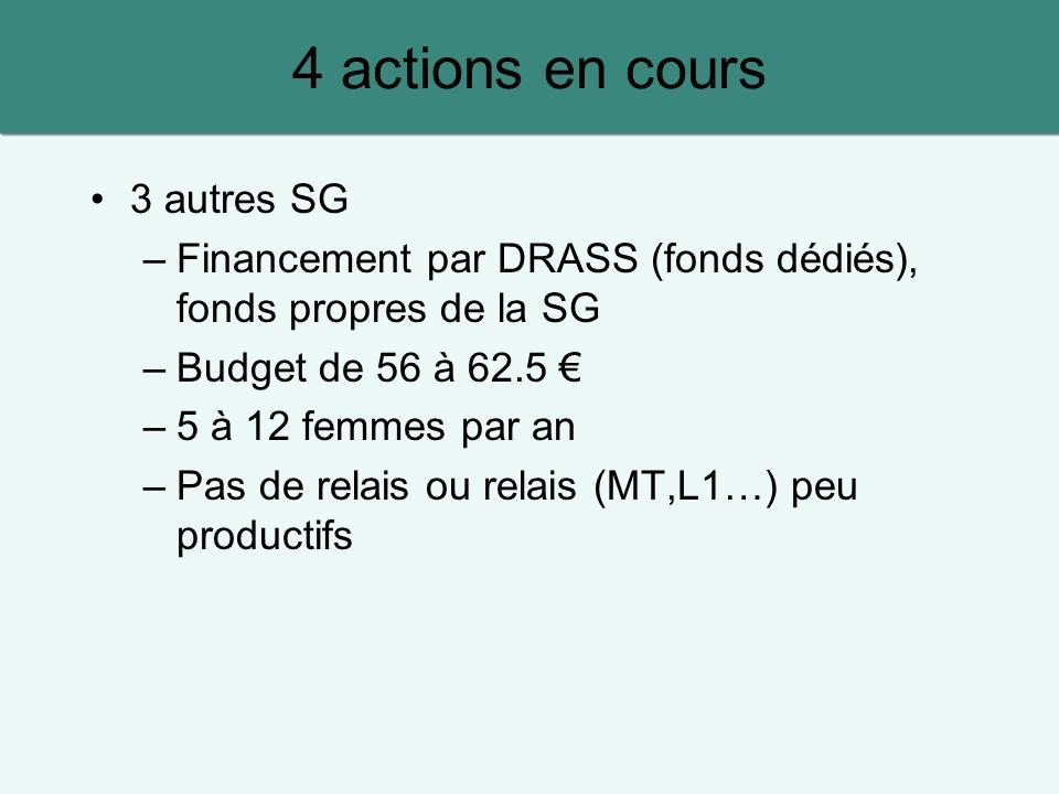 3 autres SG –Financement par DRASS (fonds dédiés), fonds propres de la SG –Budget de 56 à 62.5 –5 à 12 femmes par an –Pas de relais ou relais (MT,L1…) peu productifs 4 actions en cours