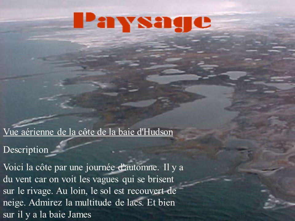 Vue aérienne de la côte de la baie d Hudson Description Voici la côte par une journée d automne.