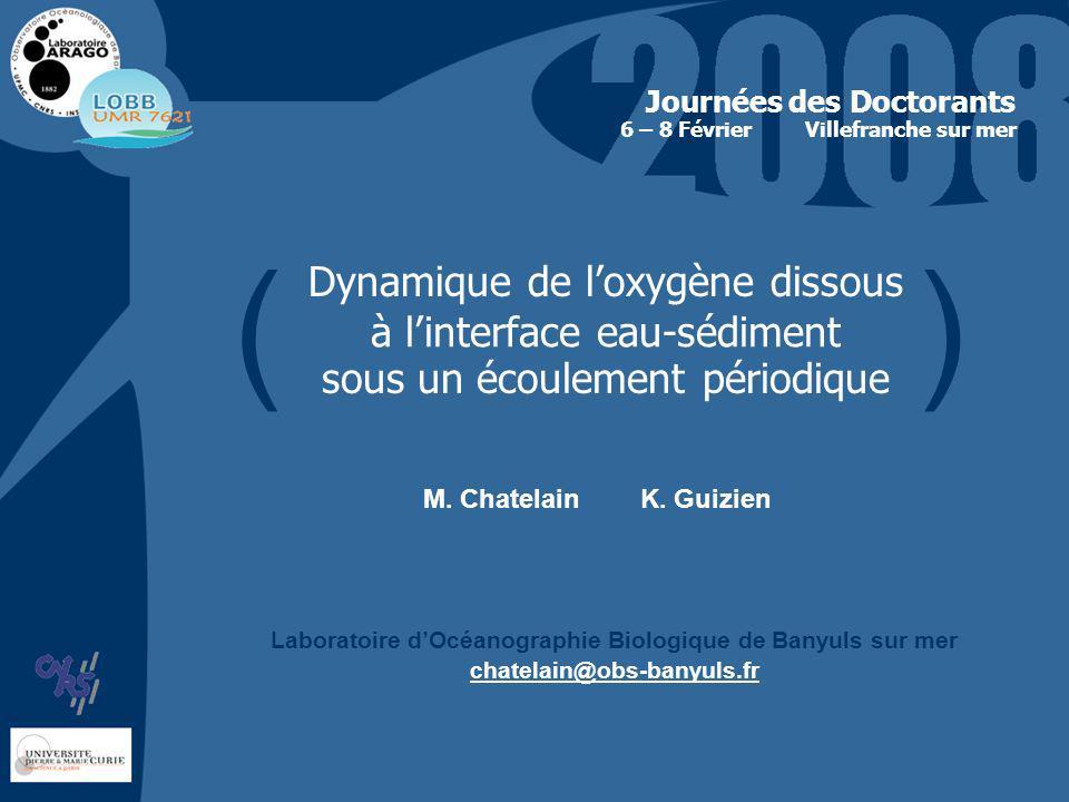 Dynamique de loxygène dissous à linterface eau-sédiment sous un écoulement périodique Journées des Doctorants Villefranche sur mer M.