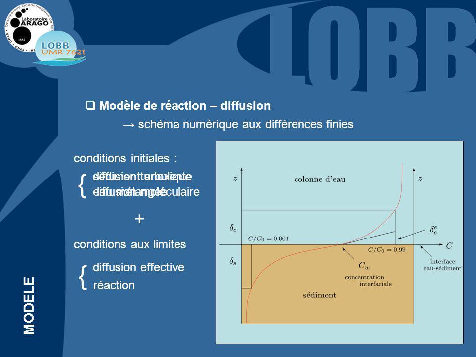 Modèle de réaction – diffusion diffusion moléculaire diffusion turbulente { réaction { diffusion effective schéma numérique aux différences finies conditions initiales : sédiment anoxique eau mélangée conditions aux limites + MODELE