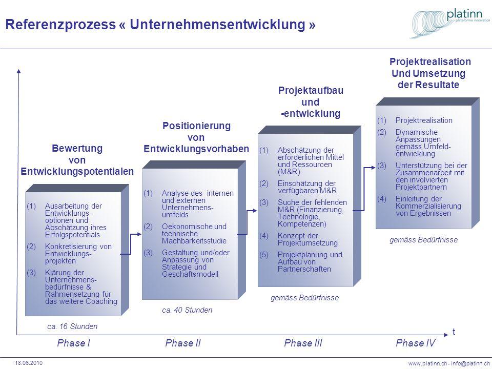 www.platinn.ch - info@platinn.ch 18.06.2010 (1)Analyse des internen und externen Unternehmens- umfelds (2)Oekonomische und technische Machbarkeitsstud