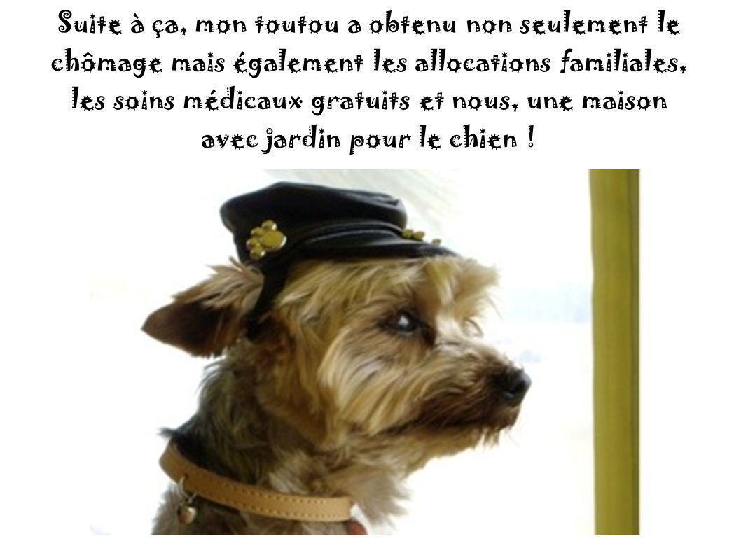 «Il est brun, bouclé, il pue, il ne parle pas un mot de Français, n' a jamais travaillé de sa vie et en plus il vole tout ce dont il a envie».