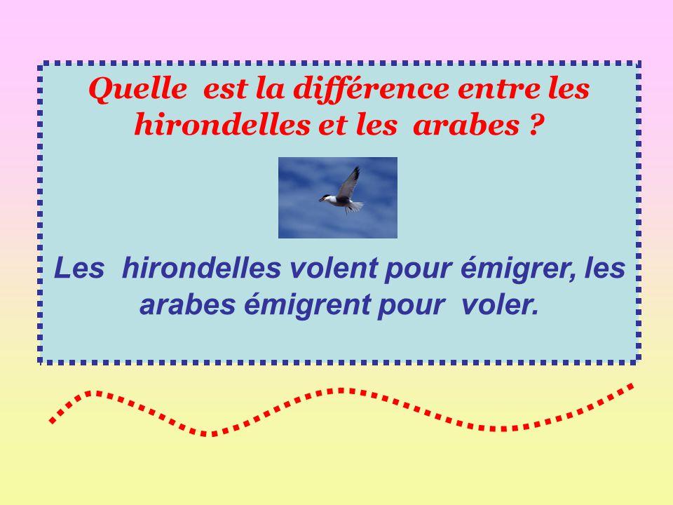 Quelle est la différence entre les hirondelles et les arabes ? Les hirondelles volent pour émigrer, les arabes émigrent pour voler.