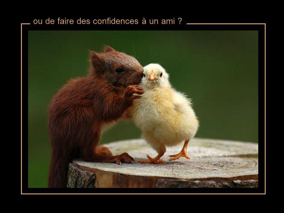 ou de faire des confidences à un ami ?