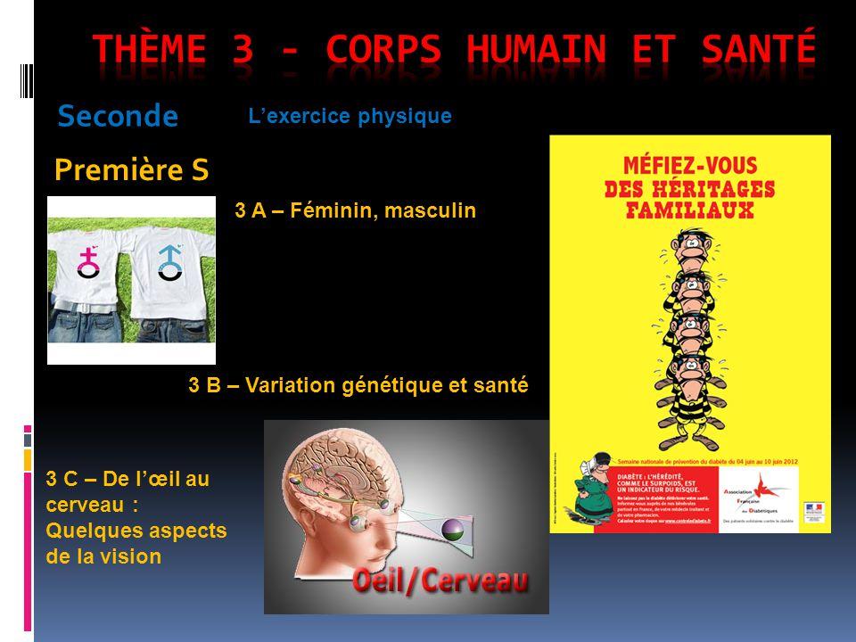 Seconde Première S Lexercice physique 3 A – Féminin, masculin 3 B – Variation génétique et santé 3 C – De lœil au cerveau : Quelques aspects de la vis