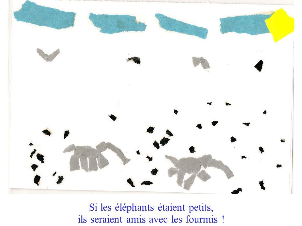 Si les éléphants étaient petits, ils seraient amis avec les fourmis !