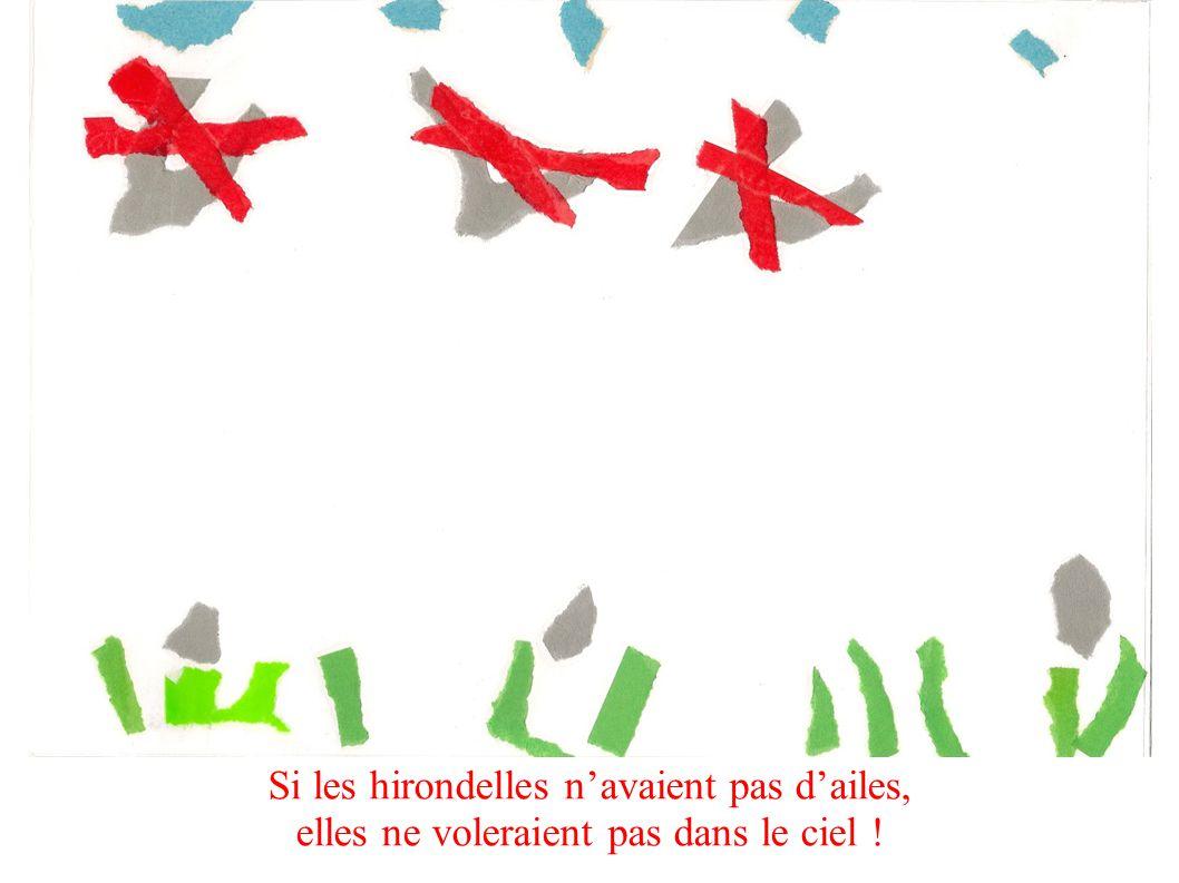 Si les hirondelles navaient pas dailes, elles ne voleraient pas dans le ciel !