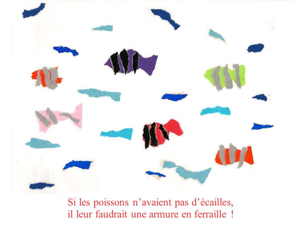 Si les poissons navaient pas décailles, il leur faudrait une armure en ferraille !