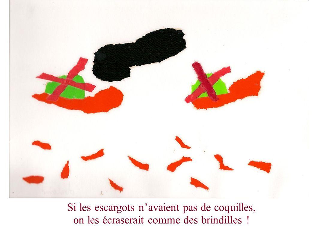 Si les escargots navaient pas de coquilles, on les écraserait comme des brindilles !