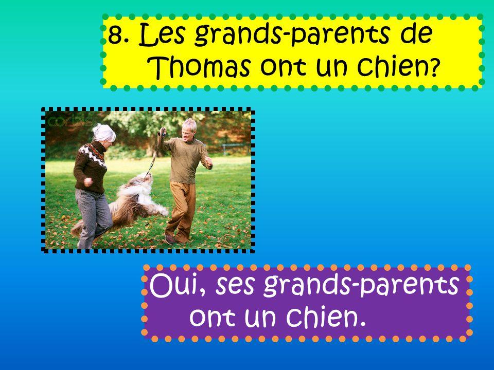 8. Les grands-parents de Thomas ont un chien Oui, ses grands-parents ont un chien.