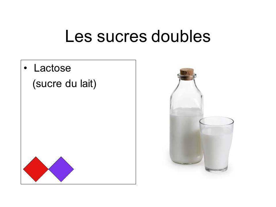 Les sucres doubles Lactose (sucre du lait)