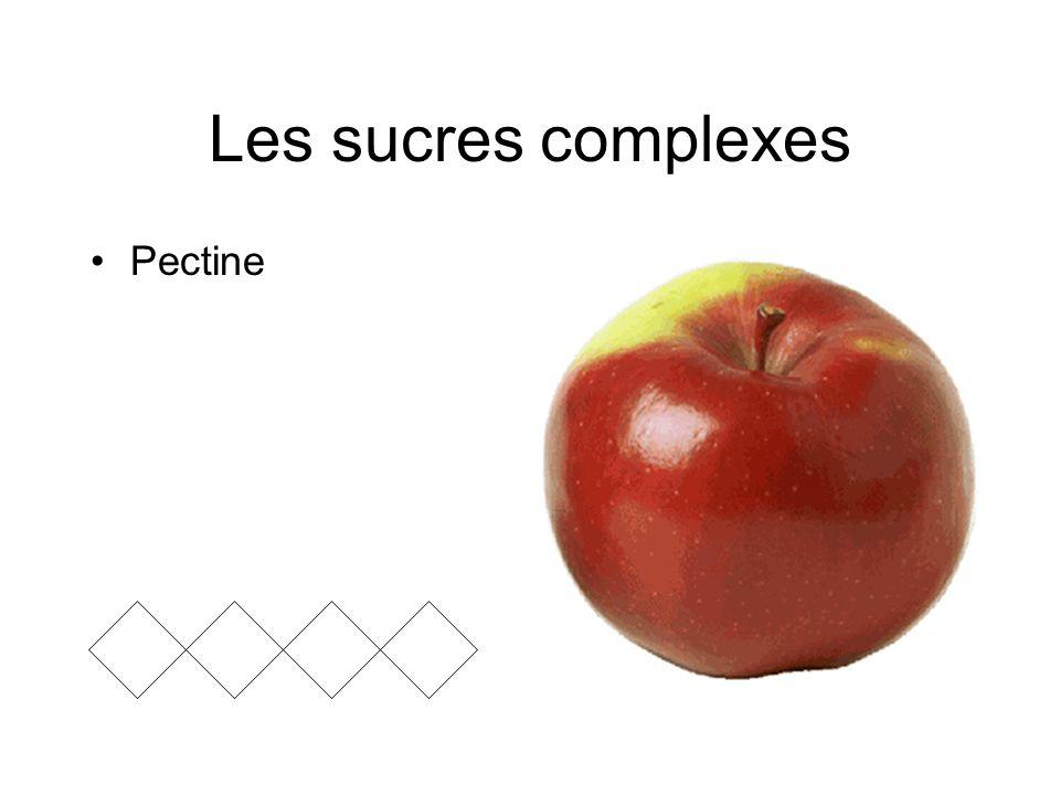 Les sucres complexes Pectine