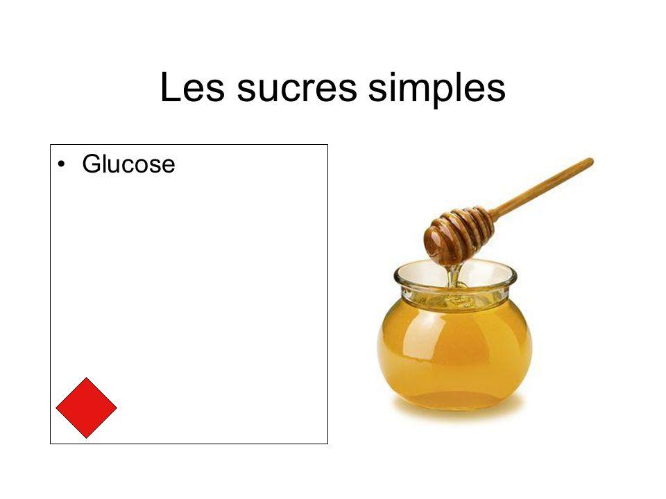 Les sucres simples Glucose