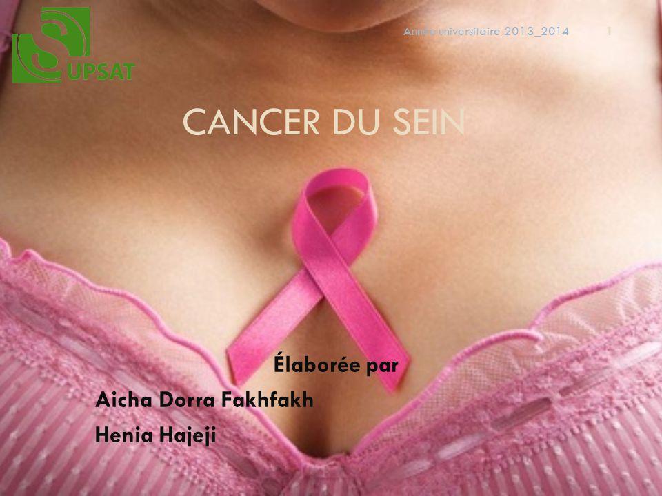 CANCER DU SEIN Élaborée par Aicha Dorra Fakhfakh Henia Hajeji 1 Année universitaire 2013_2014