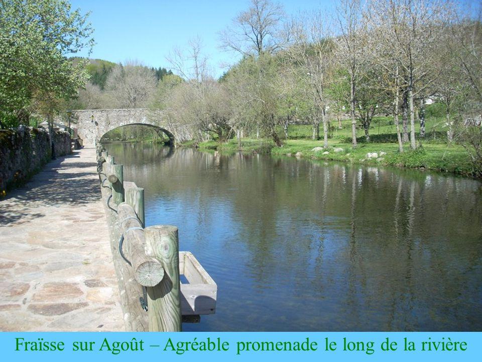 La Salvetat sur Agoût La Salvetat-sur-Agoût est une ancienne « sauvetat » créée au moyen age près dune source située sur le chemin de St Jacques de Compostelle, pour lhébergement et la protection des pèlerins en provenance dArles (« camino arlaten » ou « via arelatensis »).