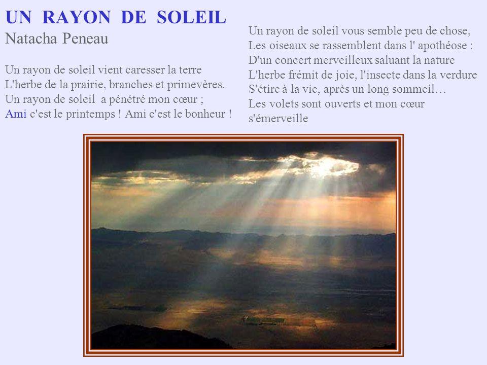UN RAYON DE SOLEIL Natacha Peneau Un rayon de soleil vient caresser la terre L herbe de la prairie, branches et primevères.