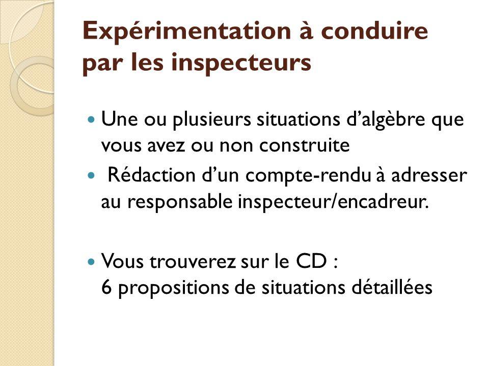 Expérimentation à conduire par les inspecteurs Une ou plusieurs situations dalgèbre que vous avez ou non construite Rédaction dun compte-rendu à adresser au responsable inspecteur/encadreur.