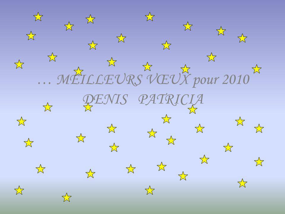 … MEILLEURS VŒUX pour 2010 DENIS PATRICIA