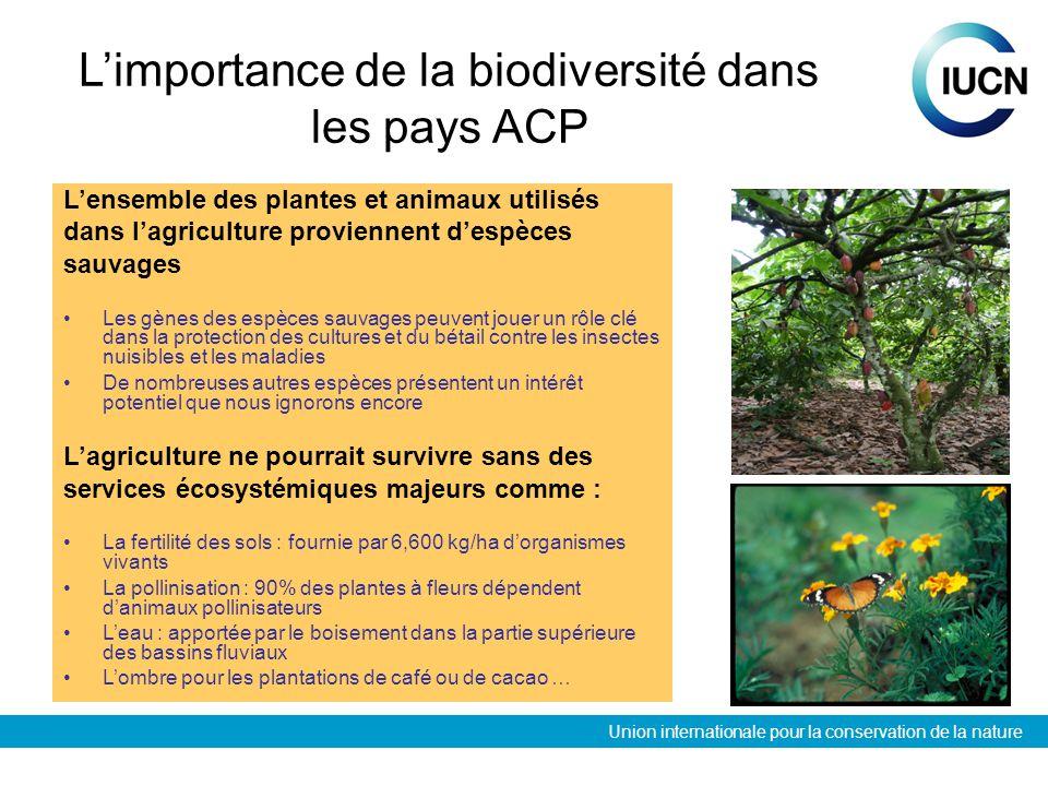 Union internationale pour la conservation de la nature Limportance de la biodiversité dans les pays ACP Lensemble des plantes et animaux utilisés dans