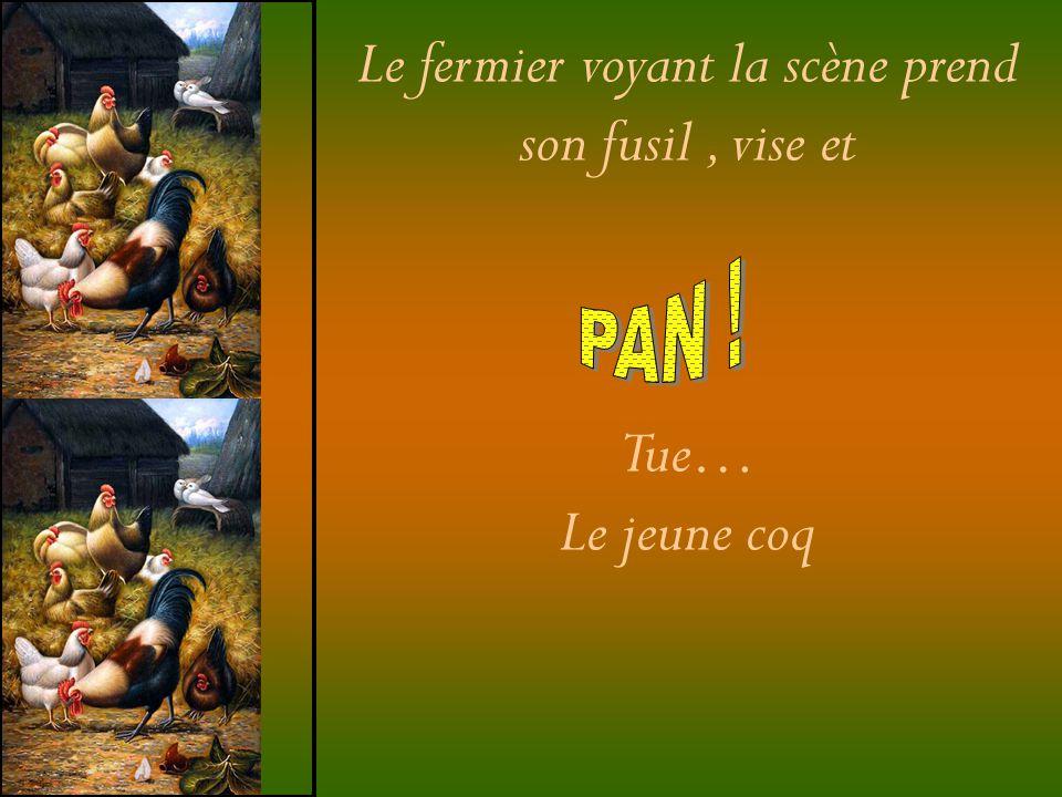 Le fermier voyant la scène prend son fusil, vise et Tue… Le jeune coq