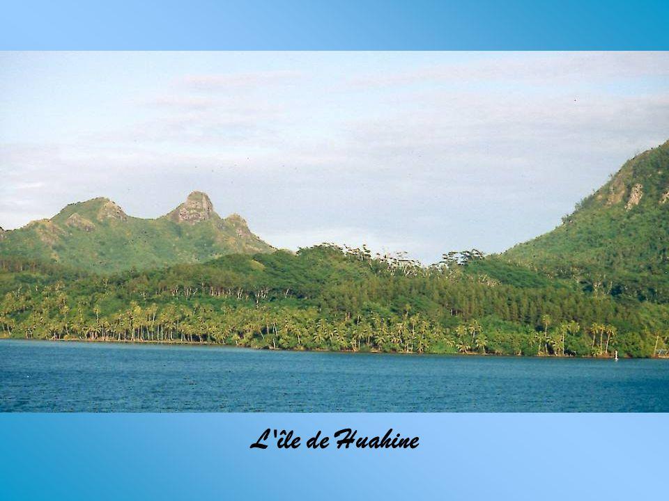 Les îles de la Société en Polynésie française sont composées de deux groupes d'îles : les îles du Vent (Tahiti, Moorea) Et les îles Sous le Vent où je