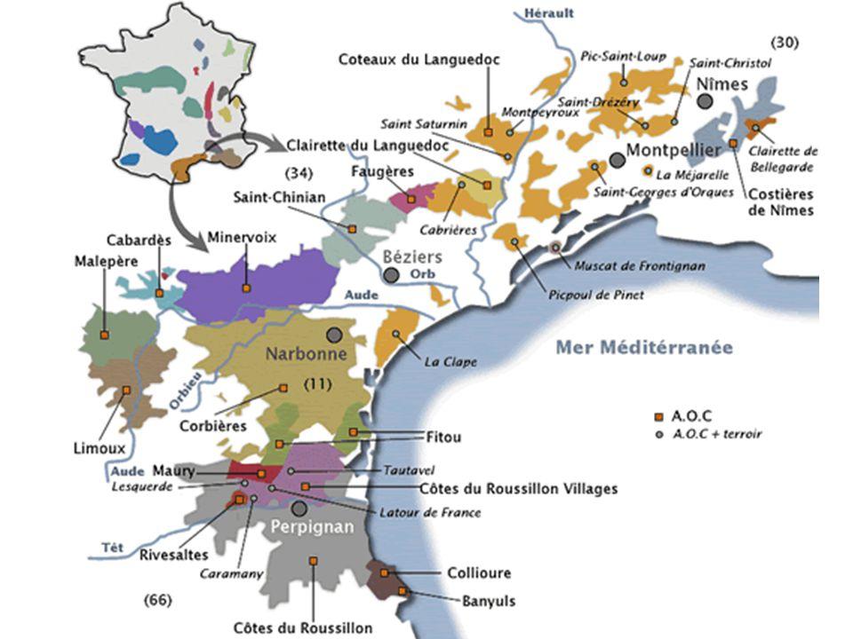 Costières de Nîmes dans Larrondissement du L Mais vin en Côtes du Rhône Nîmes Béziers Montpellier Narbonne Perpignan