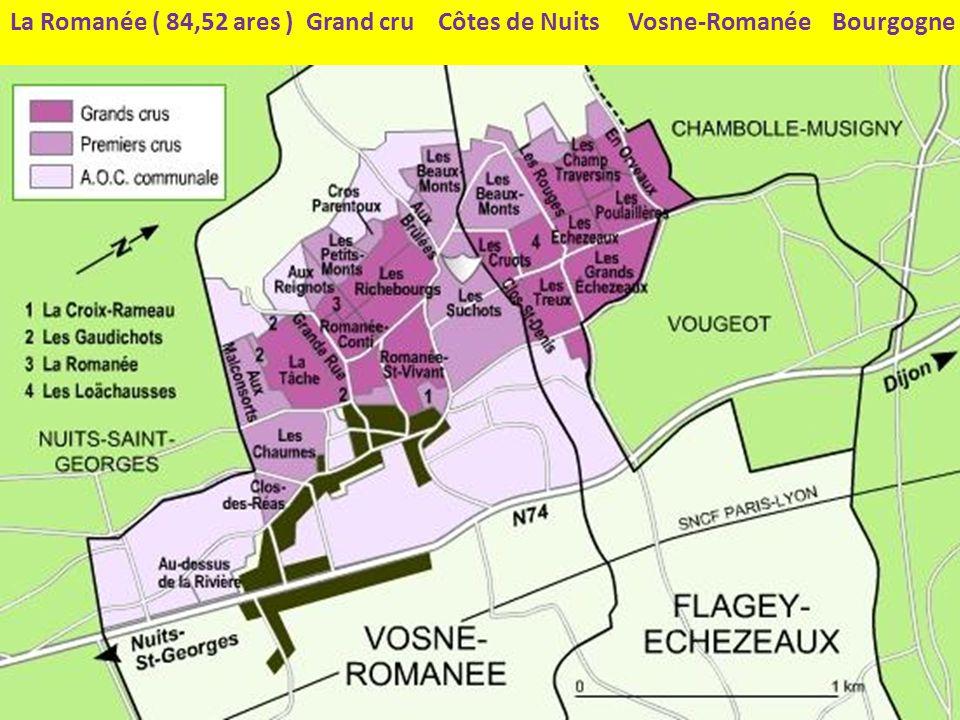 Romanée conti = 1,63 hectare, soit 18 050 mètres La Romanée ( 84,52 ares ) Grand cru Côtes de Nuits Vosne-Romanée Bourgogne Au nord de la La romanée conti 1.63 ha Côtes de nuits De laute côté du sentier …