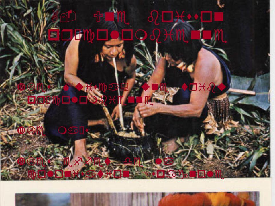 A- Une boisson précolombienne Les Muisca: une tribu précolombienne Le maïs Les effet de la colonisation Espagnole